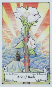 ace of rods tarot card